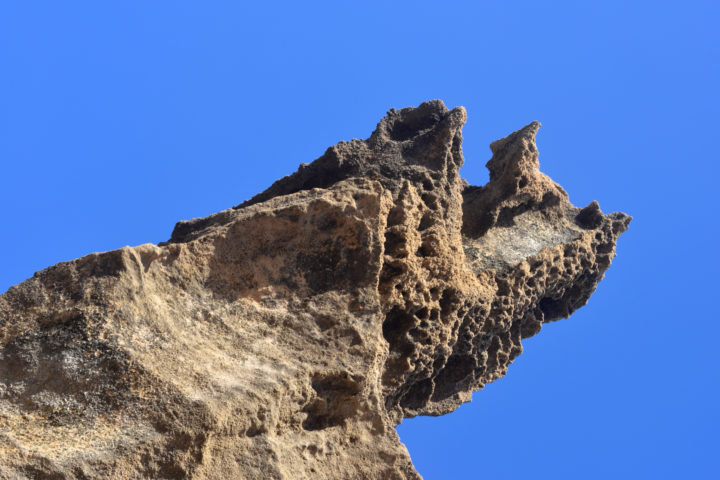 Photo of a sea weathered rock
